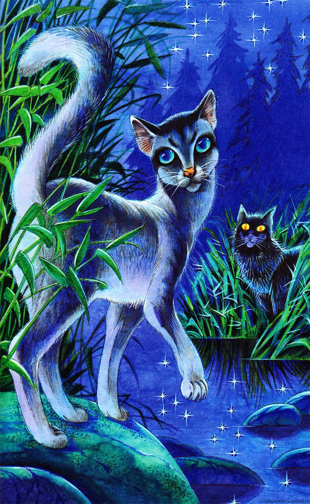главная коты воители герои племен советским
