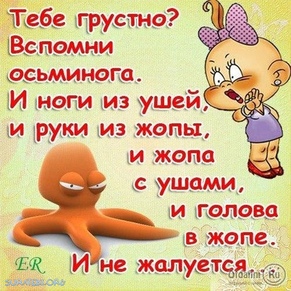 https://content-6.foto.my.mail.ru/corp/deti/_deti/i-4264.jpg