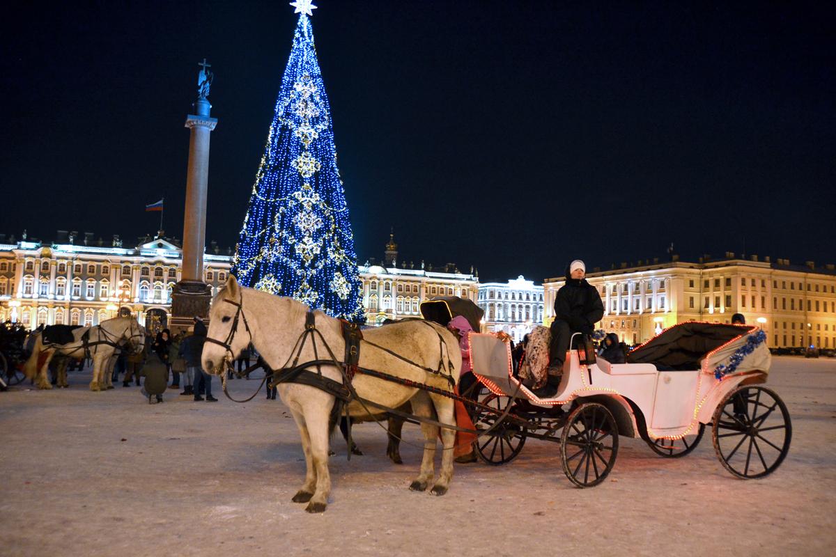 6. На Дворцовой площади.